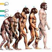 Boggles the theory of human evolution